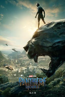 Affiche du film Panthère Noire
